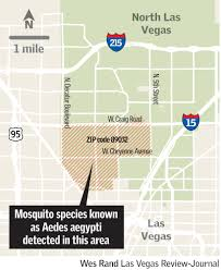 Las Vegas Zip Code Map Mosquito Capable Of Spreading Zika Found In Southern Nevada U2013 Las