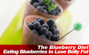 the blueberry diet eating blueberries to lose belly fat slism