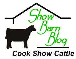 Show Steer Barns Cook Show Cattle Blog Show Cattle Cattle Cook Steer Heifer