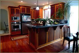home depot kitchen cabinet doors interior replacement kitchen cabinet doors gammaphibetaocu com