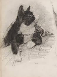 file charcoal cat drawing jpg wikimedia commons