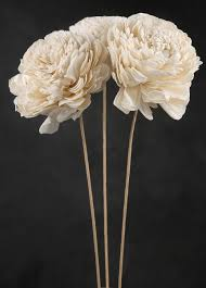 sola flowers flowers on wired stems set of 3