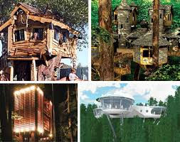 Tree House Home 10 Amazing Tree Houses Plans Pictures Designs Ideas U0026 Kits