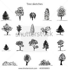 trees sketch set hand drawn vector stock vector 463658663