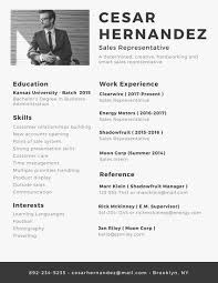 nice looking resume with picture 4 professional resume templates