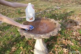 Backyard Bird Store Follow These Tips On How To Clean Your Birdbath U2013 Backyard Birds