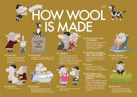 how is made how wool is made wool in schools
