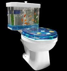 fish tanks zooillogix