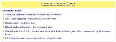 What Is A Reflex Action Example The Role Of Autonomic Reflexes Parasympathetic Sympathetic