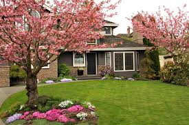 Front Yard Tree Landscaping Ideas Wonderful Front Yard Landscaping Trees Landscaping Ideas Front