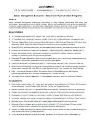 resume format for mis profile mis vice president resume mis profile resume sample business