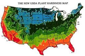 Gardening Zones Usa Map - climate information lubbock master gardeners association
