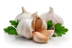 obat kuat alami buatan sendiri yang alami dan ampuh