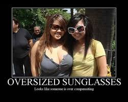 Meme Sunglasses - oversized sunglasses