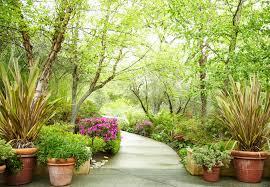 top 5 garden feng shui design and decor tips