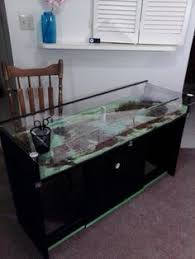 homemade coffee table snake cage snake terrarium reptile cage