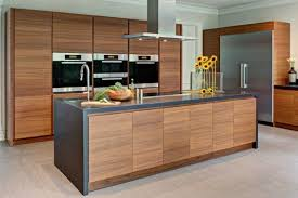 Pictures Of Modern Kitchen Cabinets Modern Kitchen Projects Modiani Kitchens