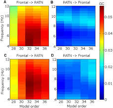 corticothalamic phase synchrony and cross frequency coupling