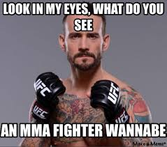 Mma Meme - 17 best memes of cm punk getting destroyed by mickey gall in ufc