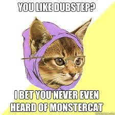 Dubstep Memes - you like dubstep cat meme cat planet cat planet