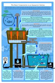 422 best aquaponics gardening images on pinterest aquaponics