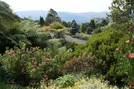 Cairns Botanical Garden by Botanical Gardens Australia Botanical Art U0026 Artists