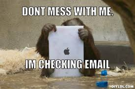 Email Meme - dont mess with me i am checking email funny monkey meme image for