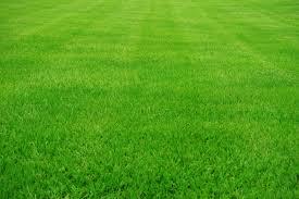 Heritage Lawn And Landscape by Hydroseeding Se Michigan Mdot Certified Hydroseeding Heritage Inc