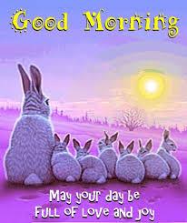 1198 best good morning images on pinterest good morning