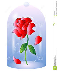 rose from beauty and the beast vector illustration stock vector