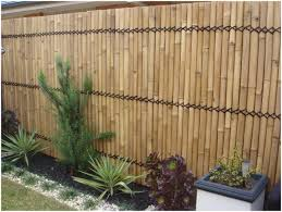 backyards beautiful create your bamboo projects 6 110 plant in