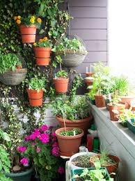 Herb Garden Layout by Herb Garden Patio Home Design Ideas And Pictures