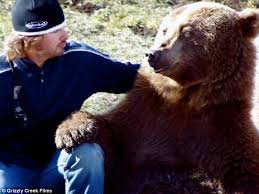 meet brutus 800lb grizzly bear likes eat meals