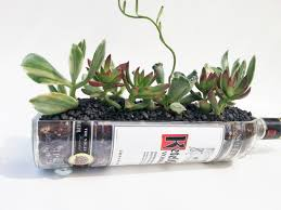 Window Sill Planter by Ketel One Vodka Live Succulent Planter Vodka Bottle Garden