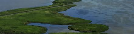 What Are Flood Plains Natural Infrastructure Solutions Wetlands International Europe