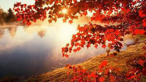 autumn wallpaper hd qygjxz