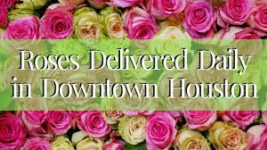 houston flower delivery flower delivery downtown houston roses delivered in tx
