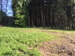 Gemeinde Bad Endorf Grundstück Zum Verkauf Landkreis Rosenheim Mapio Net