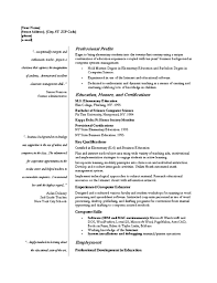 professional sample resumes professional resume it security