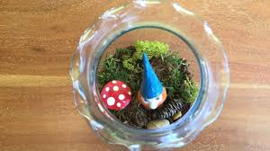 how to create a moss terrarium for a fraction of the cost of those