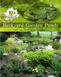 small yard pond ideas