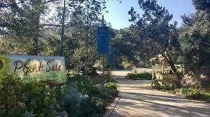 Botanic Garden Santa Barbara Santa Barbara Botanic Garden Closes Due To Smoke Danger Keyt