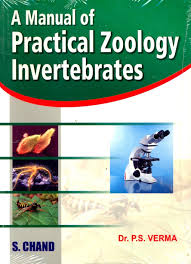 a manual of practical zoology invertebrates 15th edition buy a