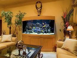 indoor saltwater aquarium design ideas for living room picture