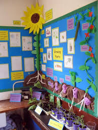 primary displays photographs and examples of primary teaching