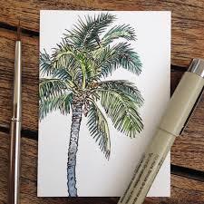 that u0027s a good palm tree u2026 pinteres u2026