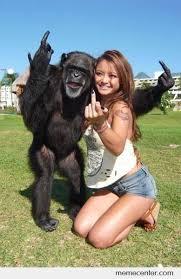 Chimp Meme - chimpanzee learns fast by ben meme center