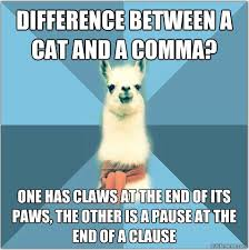 Comma Meme - 10 comma rules owlcation