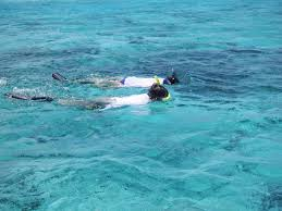 Ohio snorkeling images Snorkeling sv seas the day jpg