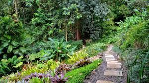 Arboretum by Lyon Arboretum Trails Of Freedom